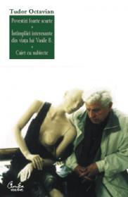 Povestiri foarte scurte, Intimplari din viata lui Vasile B., Caiet cu subiecte