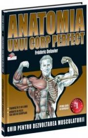 Anatomia unui corp perfect