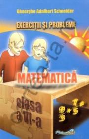 Matematica - Exercitii si probleme - clasa a VI-a
