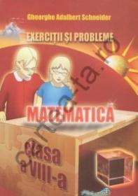 Matematica - Exercitii si probleme - clasa a VIII-a
