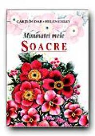 Minunatei Mele Soacre